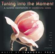 Tuning into the Moment cd cover